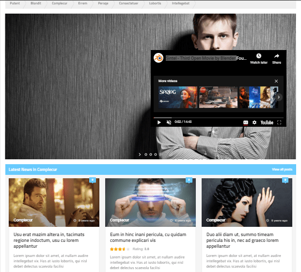 10 Best WordPress Themes For Bloggers & Affiliate Marketers 5